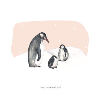 Geboortekaartje winter pinguins tweede kindje 2