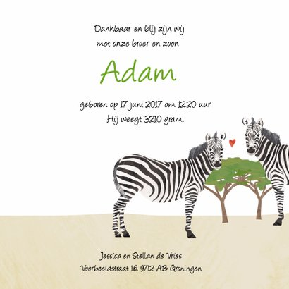 Geboortekaartje zebra Afrika 3