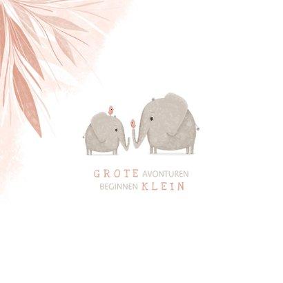 Geboortekaartje zusje met olifantjes en vogels 2
