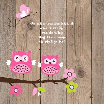 Geboortekaartje zusje uiltjes houtlook 2