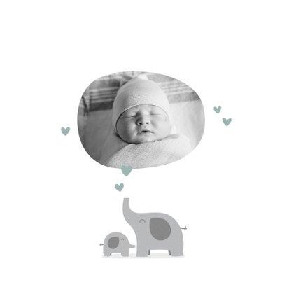 Geburtskarte Elefanten blau Foto innen 2