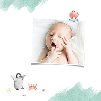 Geburtskarte mit Walross und Foto innen 2
