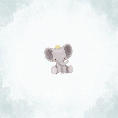Geburtskarte niedlicher Elefant Foto innen Rückseite