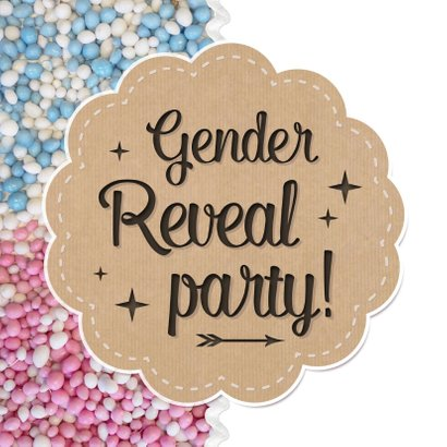 Gender reveal party uitnodiging met roze en blauwe muisjes 2