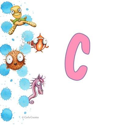 Geslaagd kaarten zeepaardje zwemdiploma A,B,C of anders 2