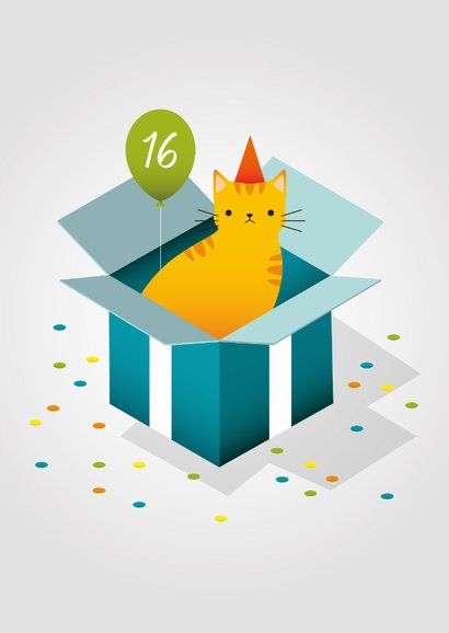 Glückwunschkarte zum Geburtstag Katze im Karton 2