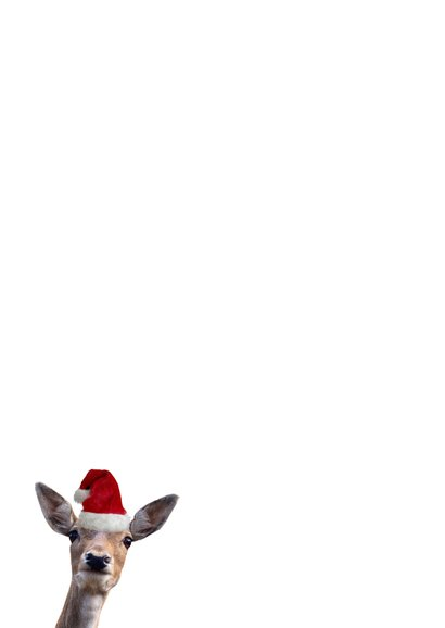 Grappige kerstkaart met foto's van hertjes met kerstmuts op  Achterkant