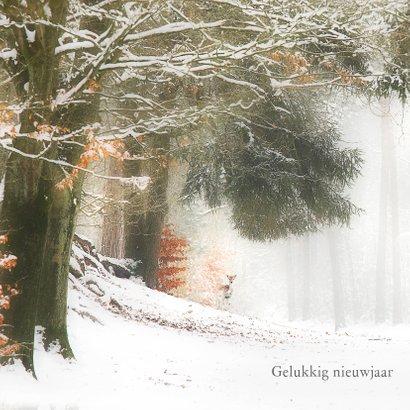 Hertjes in de sneeuw 2