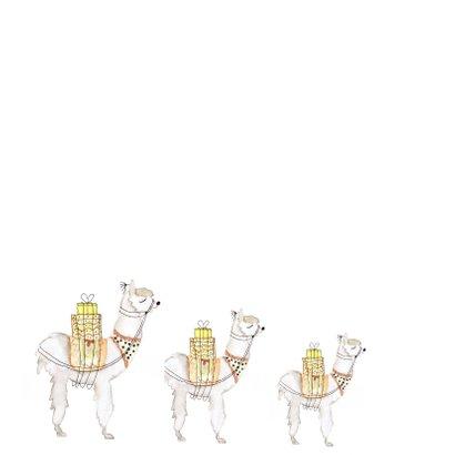 Hippe aquarel alpaca verjaardagskaart  2