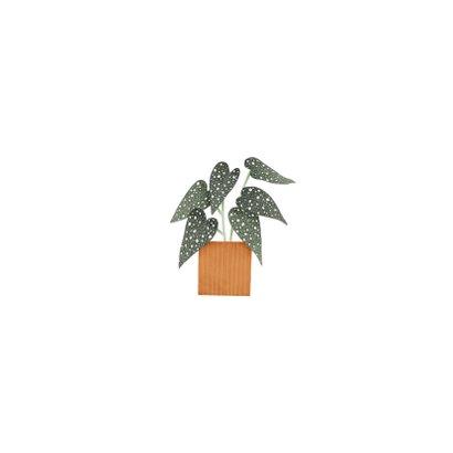 Hippe verhuiskaart met planten en tekst 'Nieuwe Woning!' Achterkant
