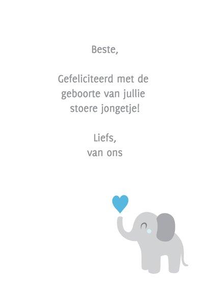 Hoera een jongen, olifantje 3