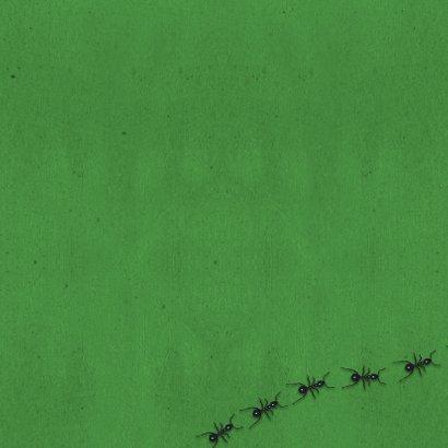 Insecten lente uitnodiging-isf 2