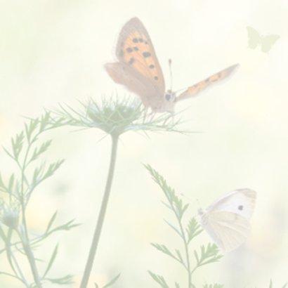 Jarig met vlinders 2