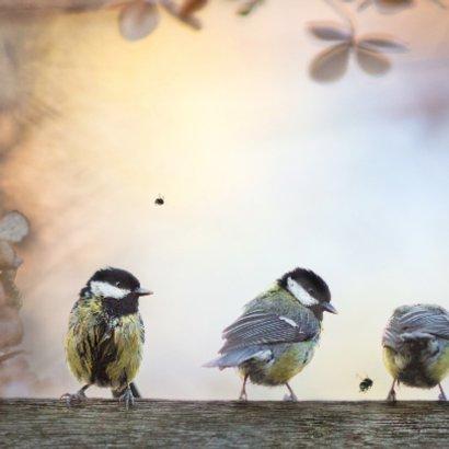 Jarig met vogels op hout 2