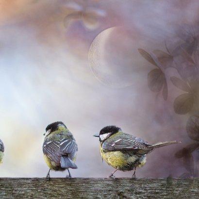 Jarig met vogels op hout 3