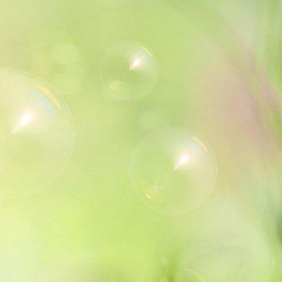 Jarig met voorjaarsbollen -2- 3