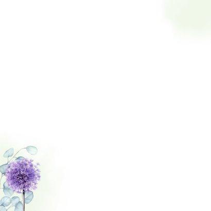 Jubileum eucalyptus paarse allium Achterkant