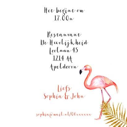 Jubileum flamingostel 3