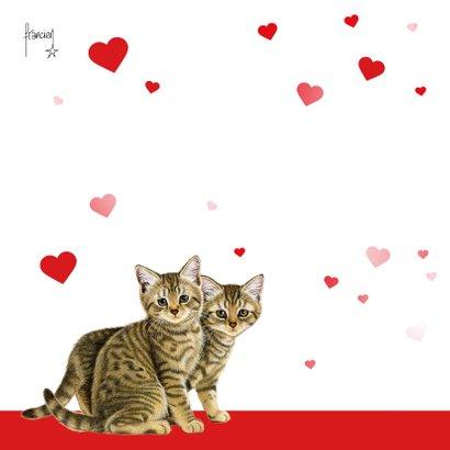 Jullie zijn goud waard kittens en hartjes 2