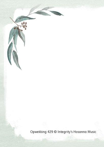 Kaart mint eucalyptus Opwekking 429 2