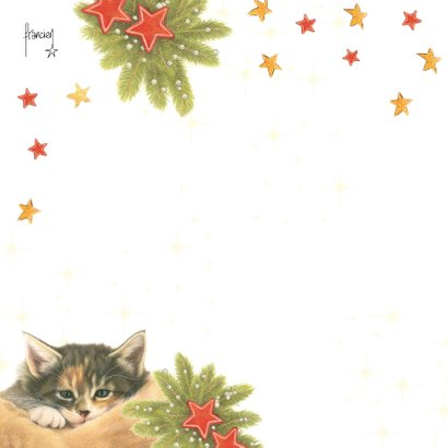 Kattenkerstkaart Have a Cozy Christmas 2