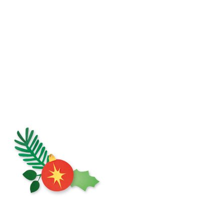 Kerst fotokaart met roodborstje 2