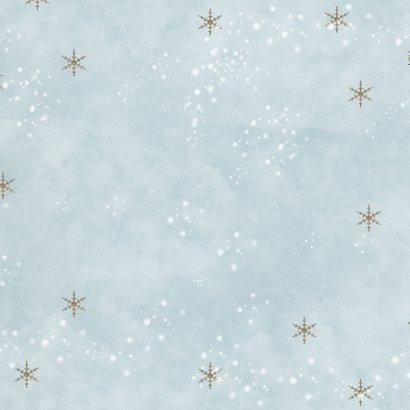Kerst vogeltjes in de sneeuw Achterkant
