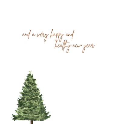 Kerst / Wishing you a lovely christmas 2
