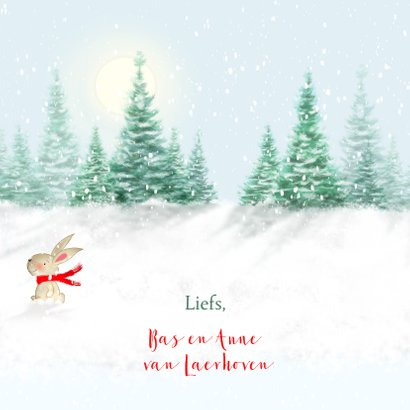 Kerstbeer met slee en konijn in de sneeuw 3