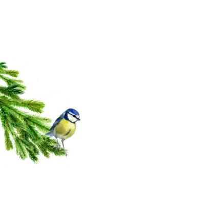 Kerstboom met een pimpelmeesje 2