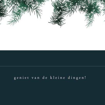 Kerstkaart 2021-2022, kersttakjes met lichtjes en foto 3