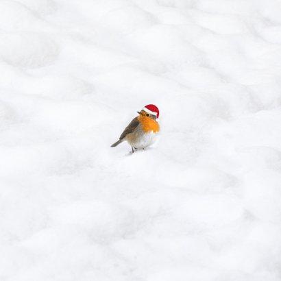 Kerstkaart 2021 houtprint in de sneeuw Achterkant