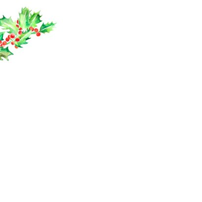 Kerstkaart foto met hulsttak en besjes Achterkant