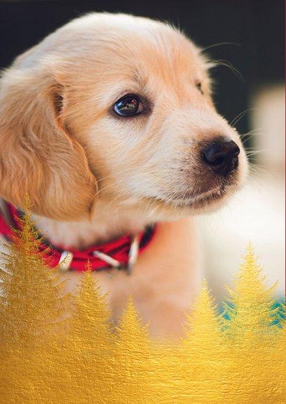 Kerstkaart gouden kerstbomen en foto 2