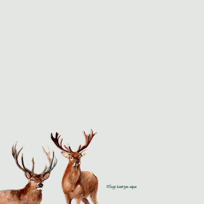 Kerstkaart Herten met hulst 2