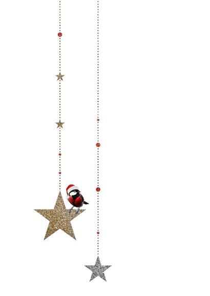 Kerstkaart koolmees op sterren met goud en zilver glitters 2