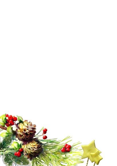 Kerstkaart - Lovely Christmas Card 2021 Achterkant