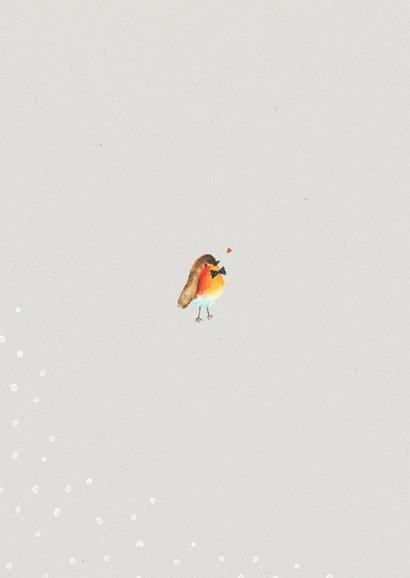 Kerstkaart met een feestelijk roodborstje en sneeuw 2