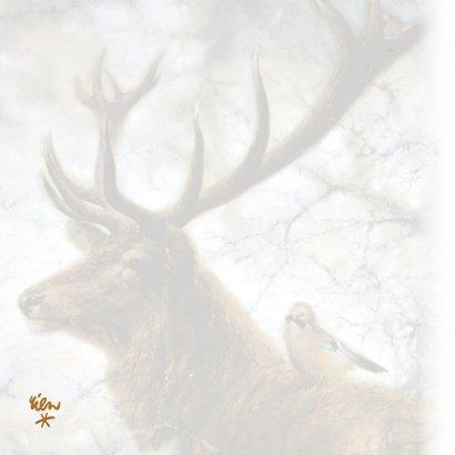 Kerstkaart met hert en Vlaamse gaai in winterbos 2