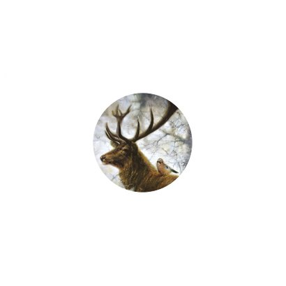 Kerstkaart met hert en Vlaamse gaai in winterbos Achterkant