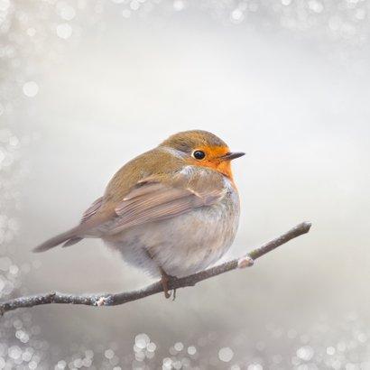 Kerstkaart met winter-roodborst 2