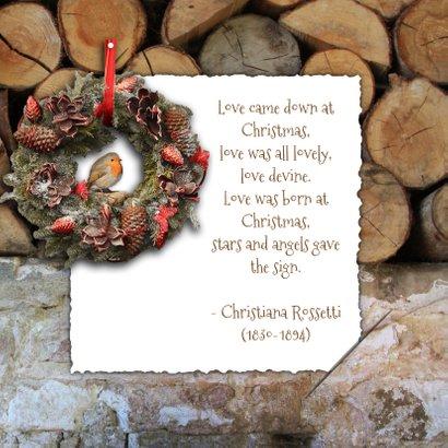 Kerstkaart roodborstje en foto 2