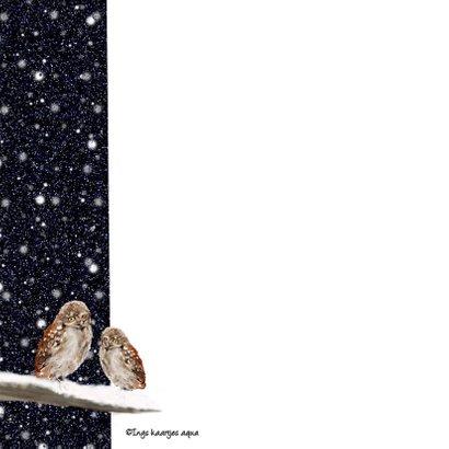 Kerstkaart Twee uilen op een tak in  2