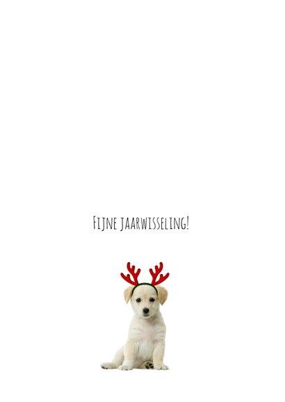 Kerstkaart van een poesje met fotolijst 2