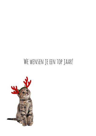 Kerstkaart van een poesje met fotolijst 3