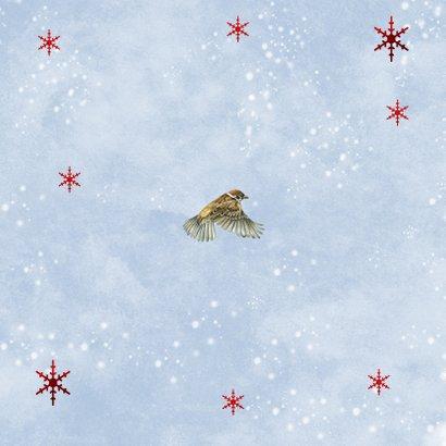 Kerstkaart vogeltjes in sneeuw Achterkant
