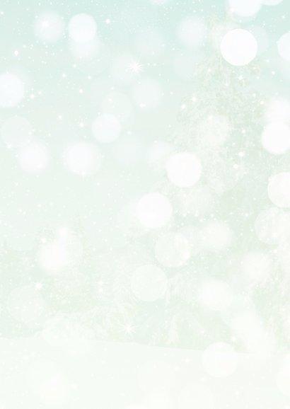 Kerstkaart Winterkoninkje op tak 2