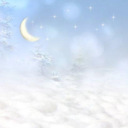 Kerstman in de sneeuw 2