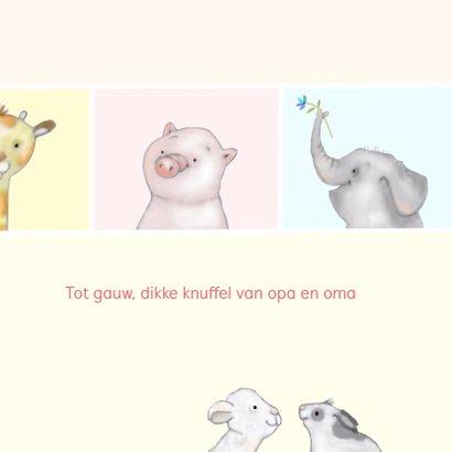 Kinder - kleine diertjes 3