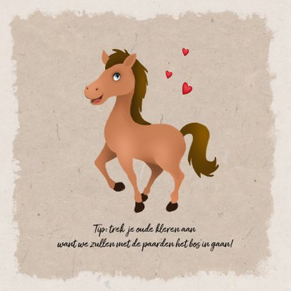 Kinderfeestje meisje thema paarden  2